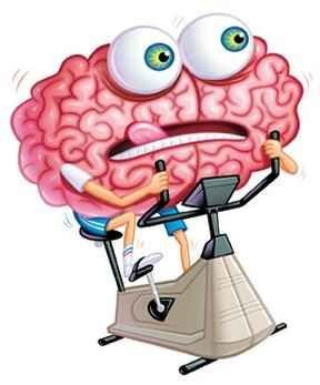 нови-връзки-в-мозъка
