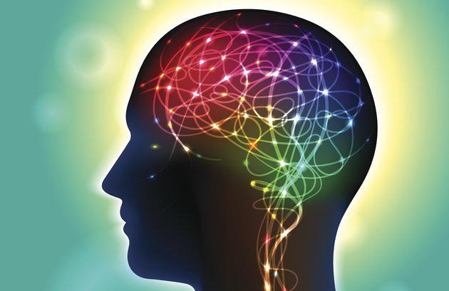Учените откриха: Щастливите и успешни хора могат да се разпознаят и по мозъка
