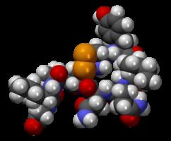 Окситоцин – хормонът на любовта и прегръдките